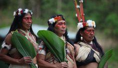the best ecuadorian tribes - Buscar con Google