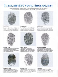 Divination: Palmistry ~ Interpreting Your Fingerprints.
