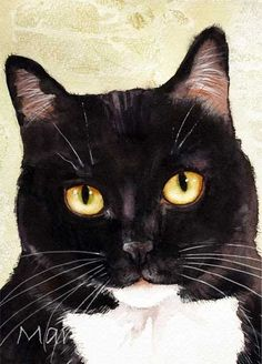 Cats | Mary Gibbs Art. Cute tuxedo cat!