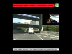 On the Road - Glenfield to Westgate via Auckland Harbour Bridge