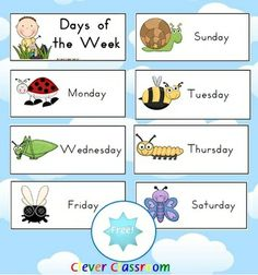 FREE Days of the Week Mini-Beasts Theme - PDF file4 page, free days of the week download from Clever Classroom. Colorful pictures of a mini...