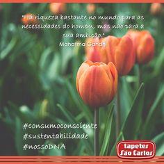 #Sustentabilidade #NossoDNA #TapetesSaoCarlos