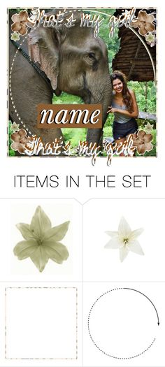 """""""❁ birdy   open icon"""" by wanderlusticons ❤ liked on Polyvore featuring art and birdysicons"""