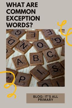 Have you heard of Common Exception Words? I don't recall hearing them as a student, but I'm hearing more about them as a teacher. This blog post is just a bit of research into what these words are and what we should do with them.