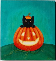 I love my black cat who was born on Halloween! #notsupersticious