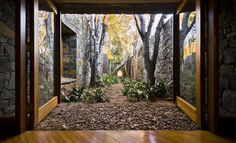 Amazing wooded courtyard, with window walls that open right onto it. Outside Living, Outdoor Living, Farm Villa, Architecture Definition, Internal Courtyard, Highland Homes, Inside Outside, Indoor Garden, Beautiful Places