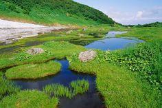 鳥海山の湿原 (c)AID