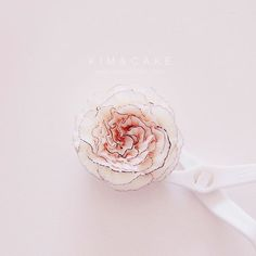 Lovely Carnation #bakingclass#buttercream#cake#baking#수제케이크#weddingcake#버터크림케이크#꽃#flowers#buttercake#플라워케이크#wedding#버터크림플라워케이크#specialcake#birthdaycake#flower#장미#rose#디저트#케이크#cupcake#dessert#food#beautiful#부케#bouquet#instacake#꽃스타그램#flowercake#peony @yoon2222222