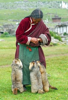 Feeding time. How sweet and heart warming is this . What I do love about it is this human`s love and these wild animals  trust .