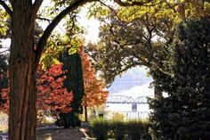 Pioneer Park & The Colors of Fall Link-up - Lori Kennedy Quilts Cheap Web Hosting, Ecommerce Hosting, Minnesota, Plants, Plant, Planting, Planets