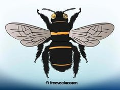 Bee Illustration Free Vector Silhouette Clip Art, Animal Silhouette, Vector Free Download, Free Vector Images, Bee Clipart, Bee Illustration, Zoo Animals, Vector Graphics
