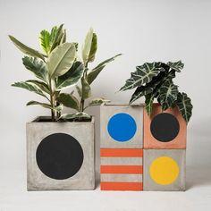 Big Plants, Potted Plants, Chopping Board Colours, Vases, London Design Festival, Concrete Pots, Hand Painted Plates, Painting Workshop, Pop Up Shops