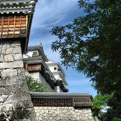 松山城。木が剥き出しの城って凄みがありますね #nagomi_fes