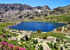 Adrian Vesa - Google+  Lacul Bucura, Retezat
