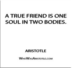 ''A true friend is one soul in two bodies. Aristotle Quotes, Love And Lust, True Happiness, Body And Soul, True Friends, Healthy Relationships, Dear Friend, Love Quotes, Wisdom