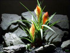 reptile or snake habitat plant: bromeliad (prp061) by ron beck designs by ronbeckdesigns on Etsy #ron_beck_designs #aquarium #plant #decor #artificial #reptile #aquarium_decorations
