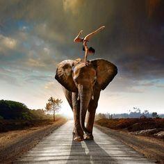 If I had an elephant I'm pretty sure I would dance on it too.