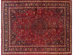 Persian year old and red on pinterest