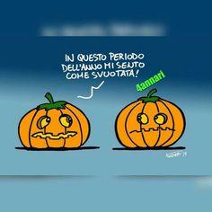 Zucche ad Halloween
