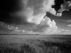 """Clyde Butcher (Born 1942), """"Everglades Restoration - Everglades National Park ~ South Florida"""""""