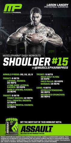Shoulder 15