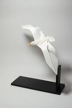 Seagull 2015 by Hoân Tiën Quyët