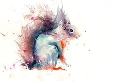 limited edition PRINT of my original RED SQUIRREL watercolour - Jen Buckley Art limited edition animal art prints