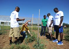 Wingfield High School football players in Jackson, MS get the chance to work in an urban garden! Their coach collaborated with the Hinds County Extension Service to make this dream a reality. These athletes are learning life skills on the field AND in the garden. Click to read the whole story!
