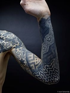 dotwork sleeves and back piece by Nazareno Tubaro