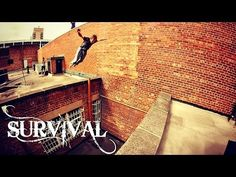 Survival - YouTube