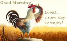When you arise in the morning, think of what a precious privilege http://ddquotes.com/good-morning-quotes/