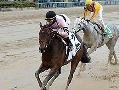 Alpha Delta Stables' homebred Lewis Bay splashed home to her second grade II score April 9, 2016 in the $300,000 Gazelle Stakes (gr. II) at Aqueduct Racetrack.