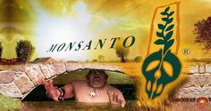 It seems Monsanto has been hiring, through third parties, thousands of Internet trolls to counter negative comments about their products and business practices.