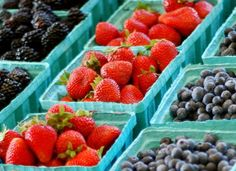 Darya Pino, Ph.D: Top 10 Mistakes Made by Farmers Market Newbs