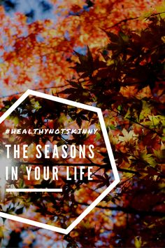 comparison of human life with seasons, healthy not skinny, healthynotskinny, life is like season, sseasons change people change, seasons in your life