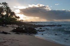 Oahu: North Shore - Turtle Beach aka Laniakea Beach