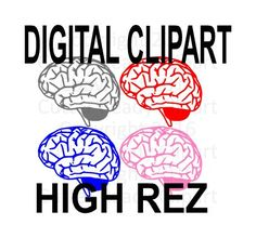 Human Brain Clip art. Set includes Mixed colors by DavesDigitalArt