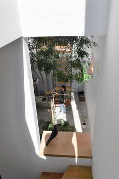 "A sense of reasonable distance that makes you want to call out to Shinya, who is resting at ""Plaza"" without thinking. Modern Japanese Interior, House 2, Home Deco, House Tours, Design Elements, Outdoor Gardens, Sweet Home, Patio, Interior Design"