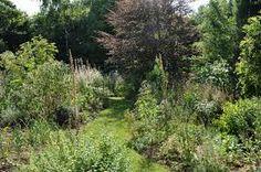le jardin de charme malicorne sur sarthe - http://lejardindecharme.free.fr/notre%20jardin.htm