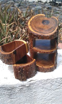 Fallen Mesquite Log Box / Tea / Natural Jewelry Box With 2 Drawers