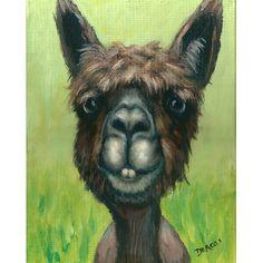 Alpaca Farm Animal Art Print Painting by Dottie Dracos Dark Cow Art, Horse Art, Farm Animals, Cute Animals, Llama Arts, Llama Llama, Farm Art, Animal Paintings, Face Paintings