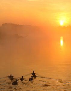 Towards to the Rising Sun by DeingeL.deviantart.com on @deviantART