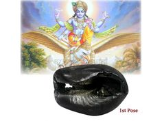 Chakradhari Vishnu Garuna Shalagram Shila bring good luck, good fortune, peace and happiness, spiritual enlightenment and so on. Sudarshan Shaligram is most beneficial effects based on the positioning of the planets in their horoscopes. http://vedicvaani.com/index.php?_route_=Chakradhari-Vishnu-Garuda-Shalagram-Shila . The person who offers a daily service for the salagrama stone will be freed from the fear of death, and he will cross over the stream of births and deaths.