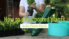 Sometimes, the plants you'd like to grow in Al's Flower Pouch are a little too big for the pouch. Don't worry! Here's how to solve that problem and grow a beautiful vertical garden. #torontolovesplants #alsflowerpouch #afp #amahort #amasolutions #verticalgarden #verticalgardening #gardenideas #gardeninspiration #wallbag #flowerbag #plants #greenthumb #website #launch