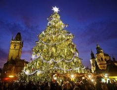 25 Of The World´s Most Beautiful And Original Christmas Trees