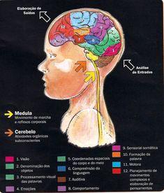 Psychology Studies, Portal, Language Study, School Motivation, Med School, Study Inspiration, Study Notes, Neuroscience, Physiology