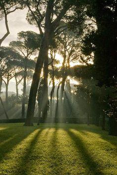 Villa Borghese Garden - Rome