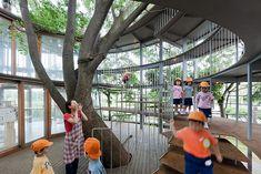 Ring Around the Tree / Tezuka Architects