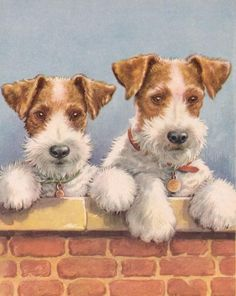 Vintage Winifred Martin print of Wire Haired Fox Terriers Chien Fox Terrier, Wirehaired Fox Terrier, Wire Fox Terrier, Bull Terrier, Dog Illustration, Illustrations, Graffiti Kunst, Smooth Fox Terriers, Terrier Puppies