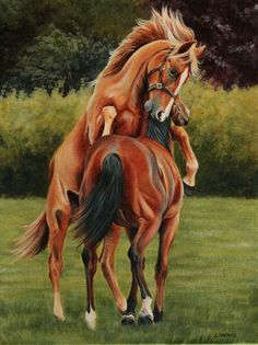 ARTFINDER: Yearling colts at play by Stephanie Greaves - A typical late summer scene on a thoroughbred stud, yearling colts enjoying their freedom before going through the sales ready to start a racing career.  horse, art, horses, painting, equine art  12...